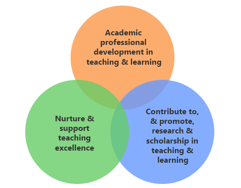 Academic Practice seeks to transform and influence teaching and learning, with a focus on these core areas of activity.